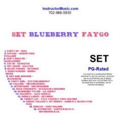 SET Blueberry Faygo
